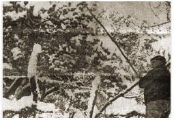 Photo de l'Almanach d'événement météo du 26/4/1976