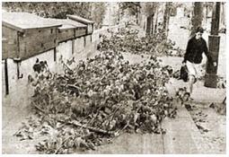 Photo de l'Almanach d'événement météo du 6/7/1969