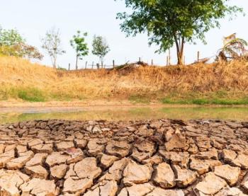 Point complet sur le risque de sécheresse pour la suite de l'été